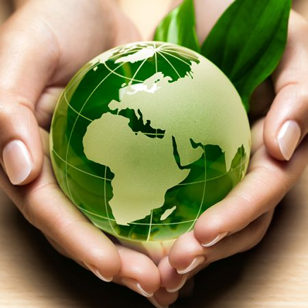 Ecology: Influence of the natural environment and the human factor