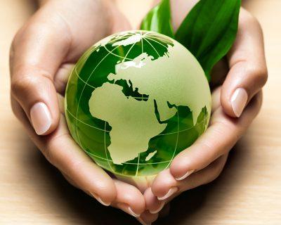 Ecología: Influencia del medio natural y el factor humano (Soft Skills)