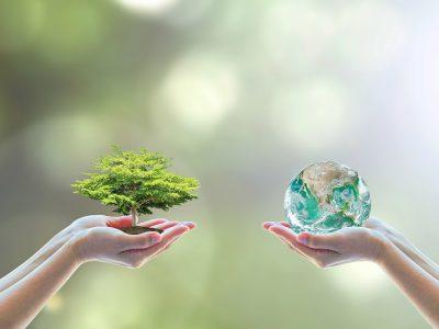 Medio natural: Hábitat y biodiversidad