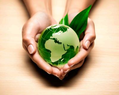 Ecología: Influencia del medio natural y el factor humano